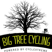 Big Tree Cycling
